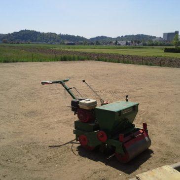 Sejanje trave ali polaganje travne ruše