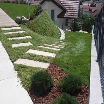 Nasveti za sejanje trave na brežini