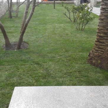Sejanje trave na vrtu – kdaj izvajamo setev