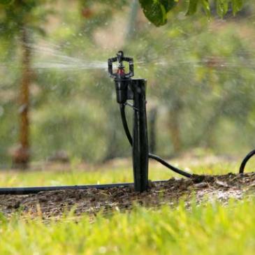 Kje lahko kupim kapljični namakalni sistem?