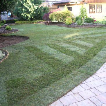 Polaganje trave – opis postopkov za polaganje travne ruše