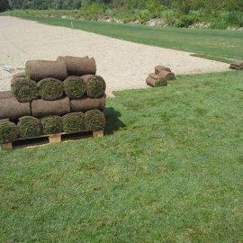 Travna ruša v Domžalah