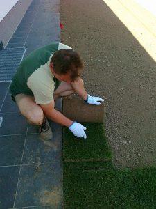 polaganje trave